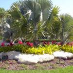 beach backyard landscape