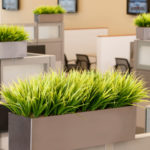 decorative artificial grasses