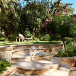 formal courtyard garden design