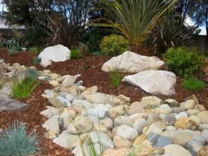 palm beach landscape design