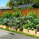 small garden beds design