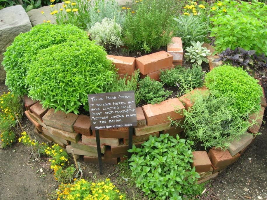 small herb garden design
